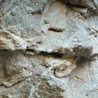 grottadoggi