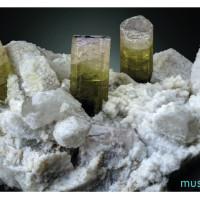 MUM-minerale-01